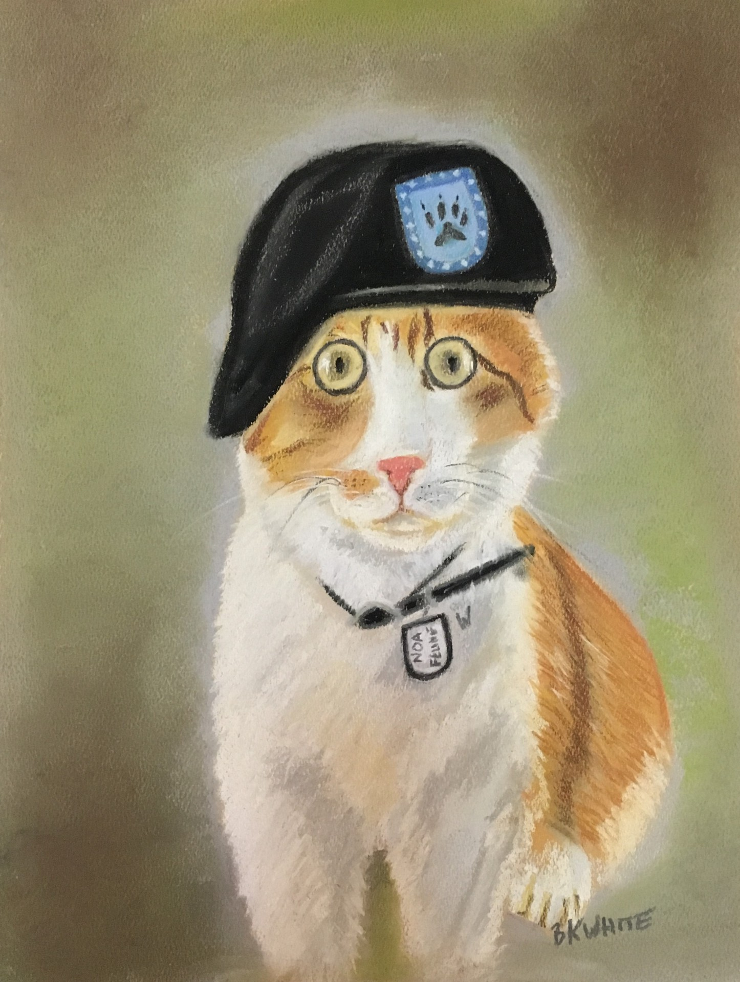 Pets, animal, Kitty, portrait, pastels, paintings, cats, army, hat