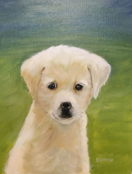 golden, retriever, dog pets, puppy, animals, paintings, fine art, gift,